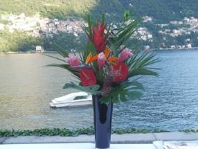 Jo Fleet flowers 3
