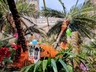 Tropical party at The Brewery